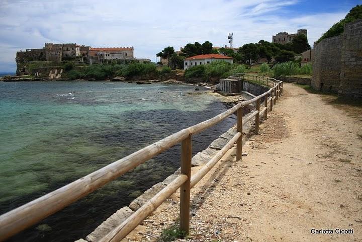 Isola d'Elba, Immagine di Carlotta Cicotti
