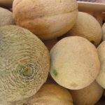 Meloni, Immagine di Flickr User GiuliaDuePuntoZero