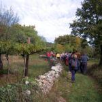 Escursione in Carso