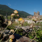 Castel Grumello Montagna in Valtellina, SO, italy