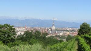 Vista su Torino dal vigneto urbano , Immagine di Roxana Iacoban